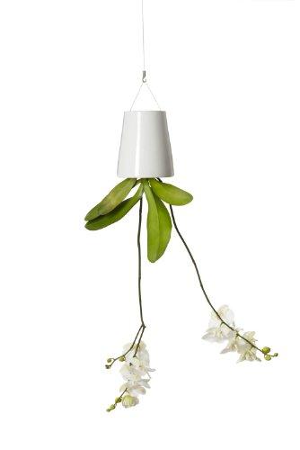 boskke-sky-planter-ceramic-medium-weiss