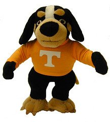 Tennessee Smokeys 10