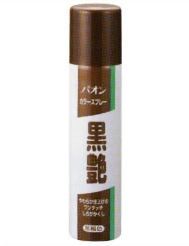 パオン カラースプレー黒艶 黒褐色 85g