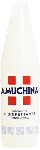 Amuchina - Soluzione Disinfettante, Concentrata, 1 l