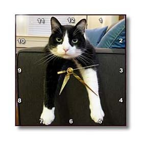 TNMGraphics Animals - Black and White Cat with Nothing to Do - Wall Clocks