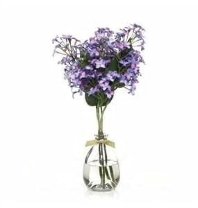 Botanical Diffusser Lavender Vanilla