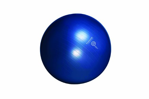 Check Out This Resist-A-Ball Stability Exercise Ball Kit