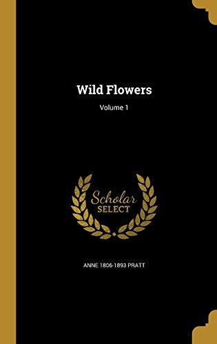 WILD FLOWERS V01