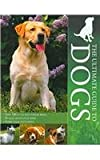 The Ultimate Guide to Dogs (1407555294) by Alderton, David