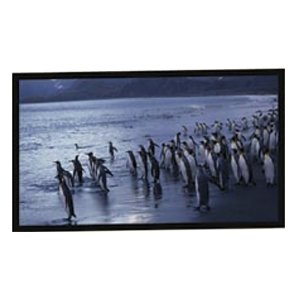 New  AccuScreens Fixed Frame Projection Screen  N09254 Picture