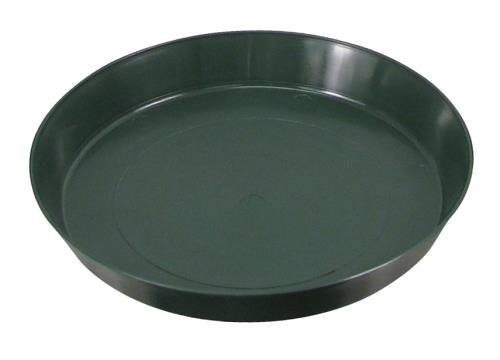 Green Premium Plastic Saucer 10-Inch, 6-Pack (10 Pot Saucer compare prices)