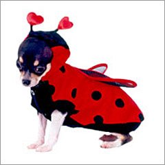 Adorable Ladybug Pet Costume ~ Perfect for Halloween