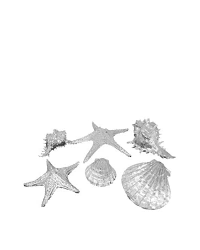 Three Hands Silver Resin Sea Shells