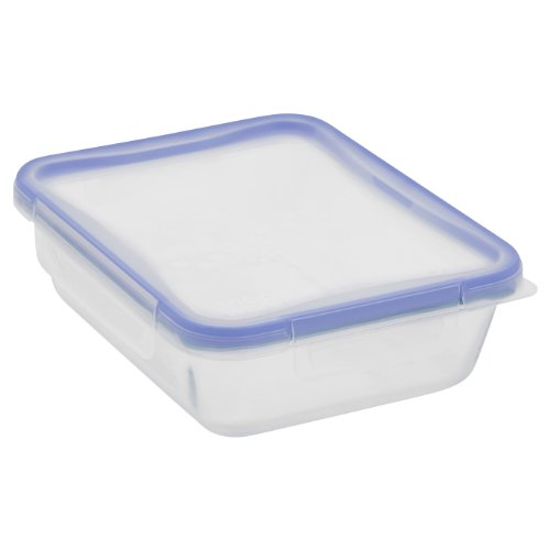 Snapware 6-Cup Total Solution Rectangle Food Storage Container, Glass (Glass Freezer Cup compare prices)