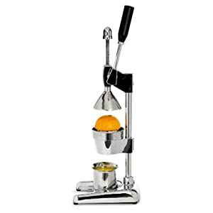 masticating juicer machine citrus power hand press orange juicer by metrokane. Black Bedroom Furniture Sets. Home Design Ideas