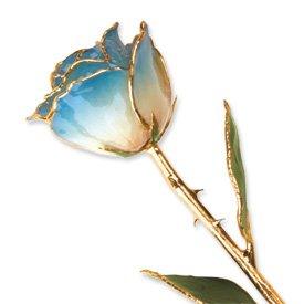 Long stem dipped 24k gold trim white blue for Blue long stem roses