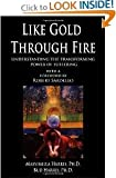 img - for Like Gold Through Fire: A Message in Suffering : A Guide for Understanding the Psychology of Suffering and Transformation book / textbook / text book