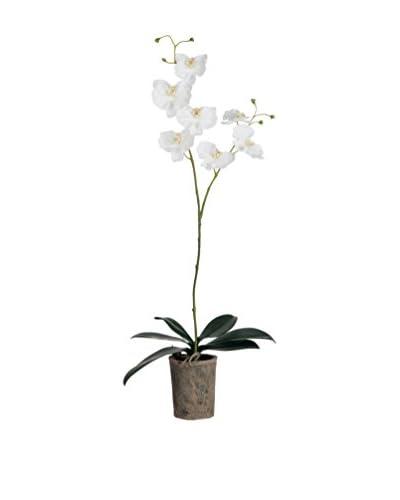 J-LINE Planta Artificial