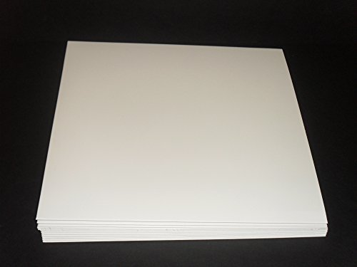 50 White Cardboard Outer LP Jackets No Center Hole Semi-Glossy Finish by LBB Music And More, LLC