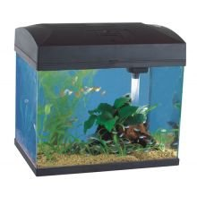 Fish R Fun Rectangular Aquarium, 37 x 25 x 33.5 cm, Black