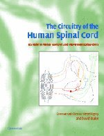 The Circuitry of the Human Spinal Cord: Its Role in Motor Control and Movement Disorders