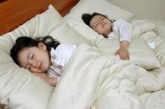 100% Certified Organic Merino Wool Crib Comforter
