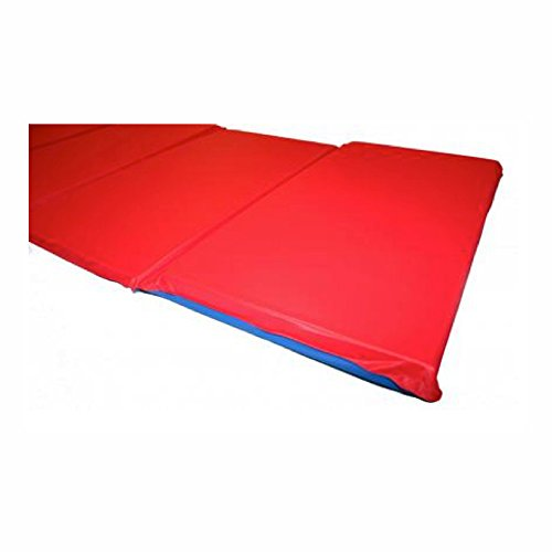 Peerless Plastics Kindermat Basic Red And Blue Mat With