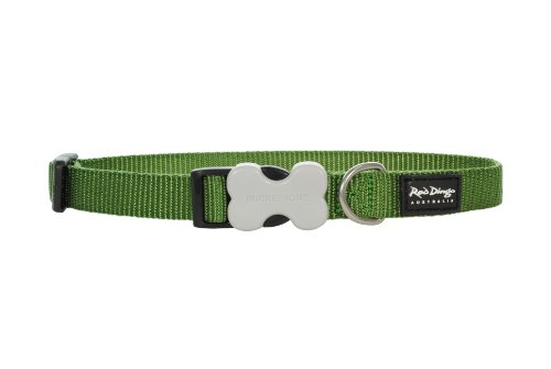 Red Dingo Dog Collar, Large, Green