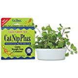 CatNip Plus - brings live fresh catnip indoors