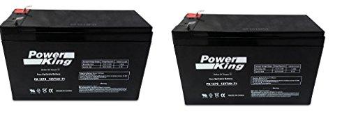 Ezip E4.5 Electric Scooter Batteries Includes 24V (2) 12V 7Ah High Capacity