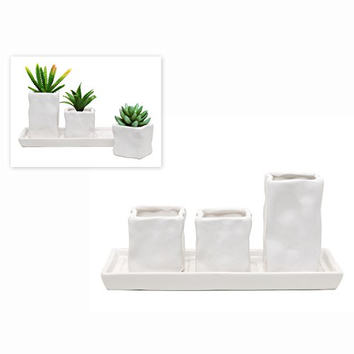 Set of 3 Modern White Stone Design Ceramic Succulent Planter / Flower Pots & Plant Saucer Tray - MyGift®