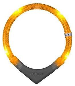 9245 Leuchtie Plus - orange - 45 cm Kopfumfang - Hunde-Leuchthalsring mit 4 superhellen Superflux-LED's - mit Plus-Batterieteil und Befestigungsschlaufe from Leuchtie