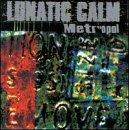 Various Artists - Lunatic Calm - Leave You Far Behind Lyrics - Zortam Music