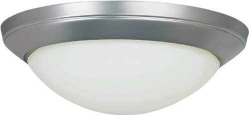 Forte Lighting 2174-02-55 Transitional 2 Light Flush Mount, Brushed Nickel Finish With Satin Opal Glass