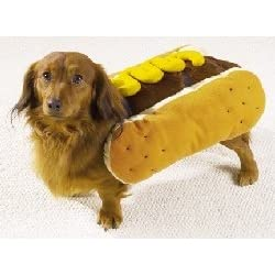 Dog Costume - Hot Diggity Dog Halloween Costume (Hot Dog w/Mustard) - Small