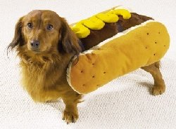 Pet Costume Hot Diggity Dog Mustard Small