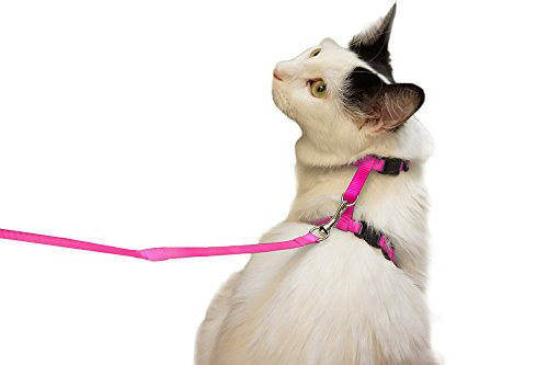 Pink Small Pet Harness Leash Nylon Adjustable Rope Strap Kitty Harness Collar 4.5