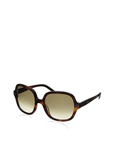Chloe Women's Sunglasses, Havana, 135/55/19