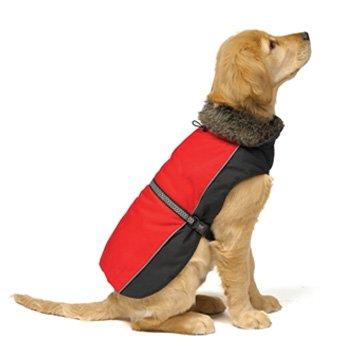 Dog Gone Smart Aspen Parka Scarlet Dog Jacket, 26-Inch