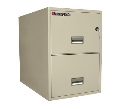 "SentrySafe Sentry Safe Two-Drawer Fire and Water-Resistant Vertical Letter File, 17"" W x 31"" D, White Glove Delivery 2T3131PWG at Sears.com"