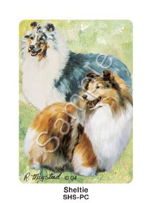 Best Friends Playing Cards, by Ruth Maystead - Shetland Sheepdogs - 1