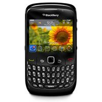 BlackBerry 8530 Prepaid Phone (Boost Mobile)