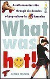 What Was Hot!: A Rollercoaster Ride through Six Decades of Pop Culture in America