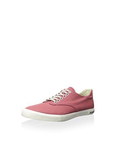 SeaVees Men's Hermosa Plimsoll Banyan Casual Sneaker
