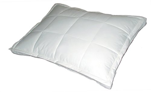 Blue Ridge Home Down Topper Queen Pillow