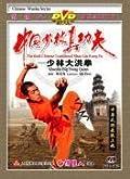 Shaolin Big Hong Quan - The Real Chinese Traditional Shaolin Kung Fu