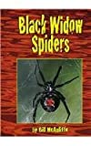 img - for Black Widow Spiders (Dangerous Animals) book / textbook / text book