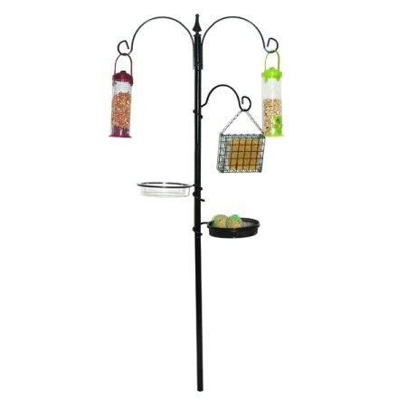 Kingfisher-Bird-Feeding-Station