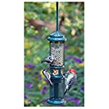 Squirrel Buster Peanut Plus Wild Bird Feeder
