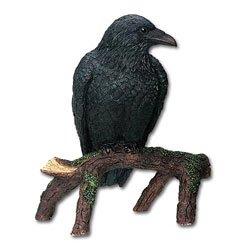 Raven – Collectible Figurine Statue Sculpture Figure Crow Bird Model