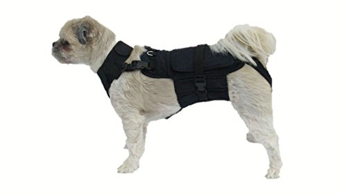 DOGonGEAR Dog Diaper Wrap with Extender Package Fits 7.5 lb to 17 lb, Small, Black (Harness Extender compare prices)