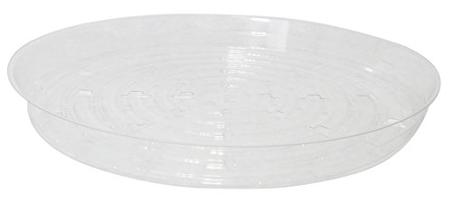 Plant Saucers - 5 Pack of 12