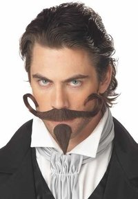 California Costumes Men's The Gambler Moustache & Chin Patch,Brown,One Size Costume Accessory - 1