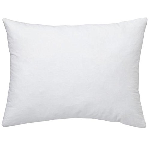 """Set Of 2 - 12 X 16"""" Pillow Inserts - Exclusively By Blowout Bedding front-784380"""